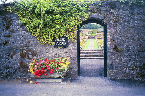 Dromoland Walled Garden