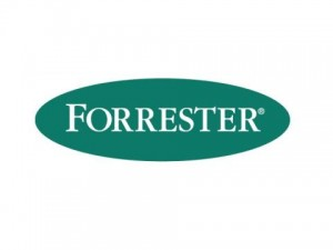 Procurement/IT Specific Lessons and Observations: Forrester's Sourcing and Vendor Management Forum