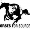 Friday Rant -- Procurement Outsourcing: Fersht's Anemic Sourcing Horse? (Part 1)