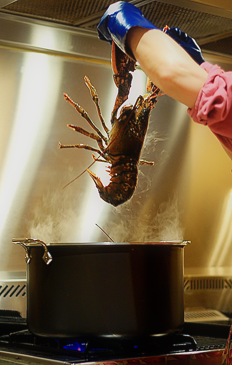 Tips to prevent 'cooked lobster' IT failures
