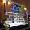 CES 2013 Report