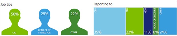 Deloitte CIO respondents